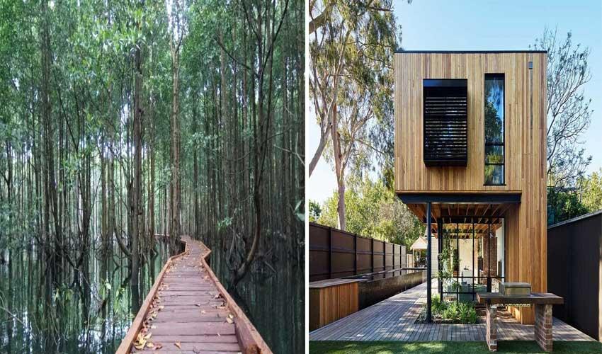 Kegunaan kayu ulin untuk manusia