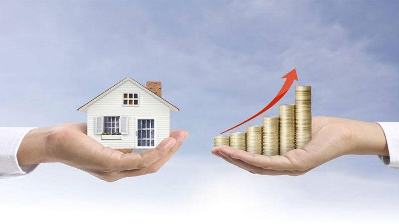 lantai kayu dapat menaikan harga jual rumah