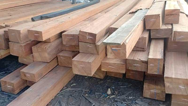 Kelebihan & kekurangan kayu kempas